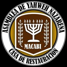 Logo leo 3